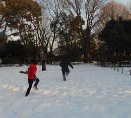 雪合戦.jpg